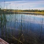 Fishing on Lake Ida